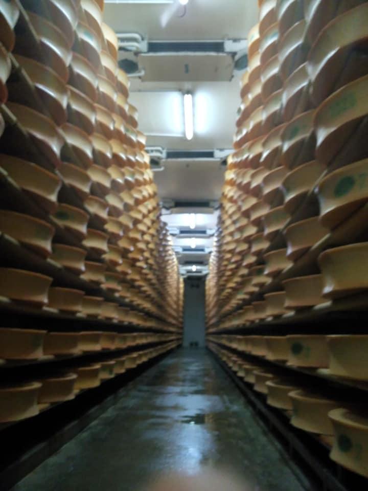 Curso de afinado de quesos
